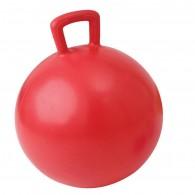 Gimnastikos kamuolys su rankena TREMBLAY 55 cm